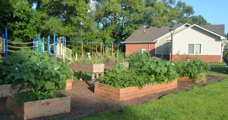 New Community Garden at Sauk Trail Pointe